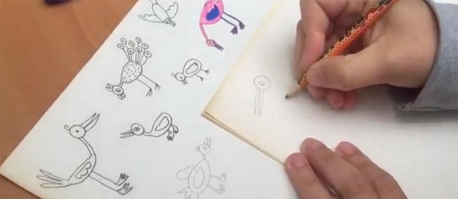 Zo teken je vogels